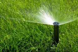 Zur Rollrasenpflege gehört auch die richtige Bewässerung des Fertigrasens