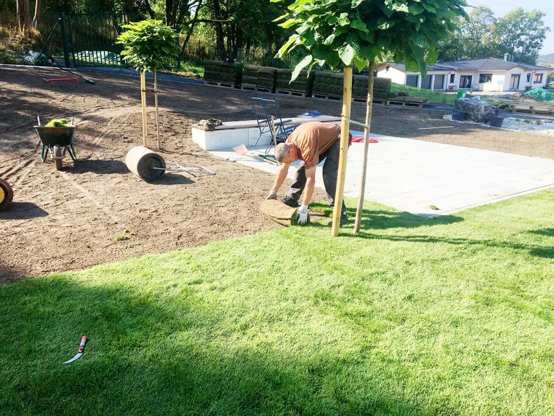 Das Maulwurfnetz ist fertig verlegt und die Bodenschicht ist aufgetragen. Jetzt kann der Rollrasen verlegt werden.