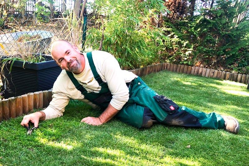 Experte für Gartenplanung, Gartenbau und Landschaftsarchitektur - Steven Höft