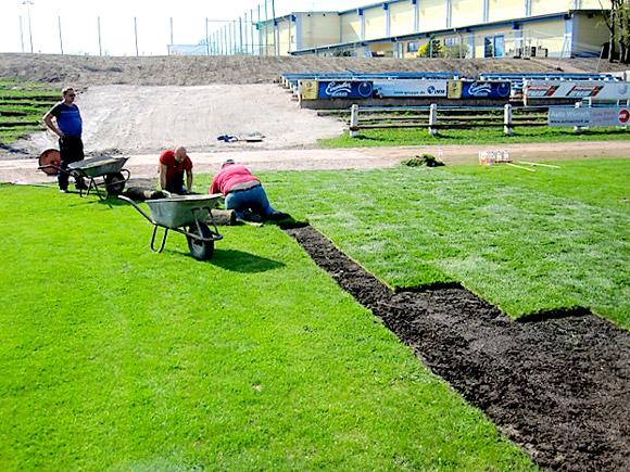 Verlegung von Sportrasen in Mittweida auf dem Sportplatz