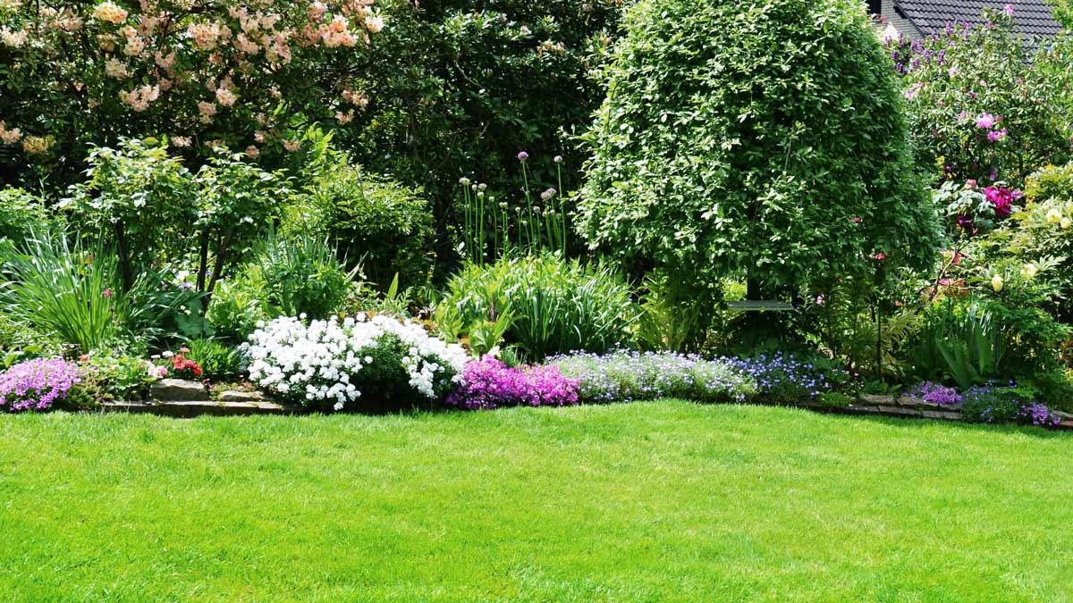Rollrasen im Garten