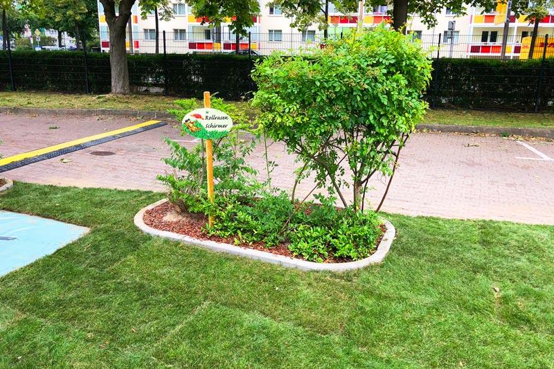 Auch Pflanzen werden in die Rasenfläche integriert