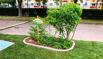 Rollrasen Schirmer verlegt Fertigrasen für ein Event im Hotel The Westin Leipzig