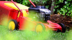 Das erste Mal Rasenmähen im Frühjahr