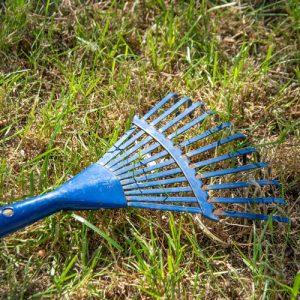 Rasenpflege im Frühjahr: Zuerst den Rasen nach dem Winter abharken